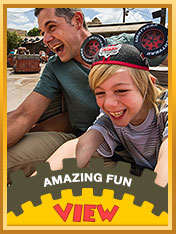 Image from www.disneytimesweeps.com